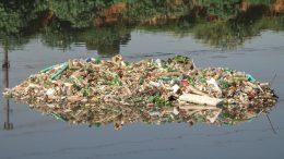 Cómo podemos evitar la contaminación