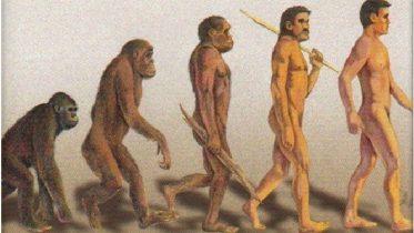 Cuál es el origen de la humanidad