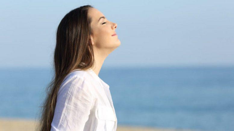 Cuáles son las fases de la respiración