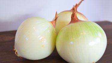Origen de la cebolla