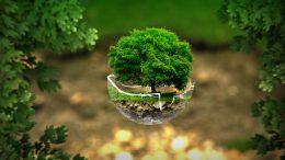 Qué es la sustentabilidad del medio ambiente
